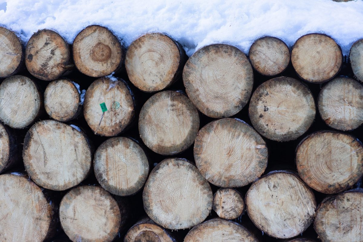 brown-wooden-logs-covered-with-snow-3646686 (VisionPic .net from Pexels)